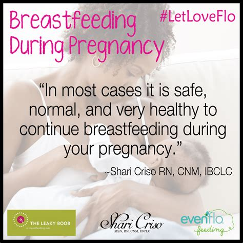 Breastfeeding During Pregnancy The Leaky Bb