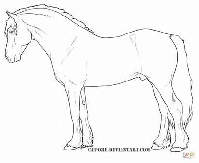 Welsh Coloring Pony Cob Shetland Pferde Ausmalbilder