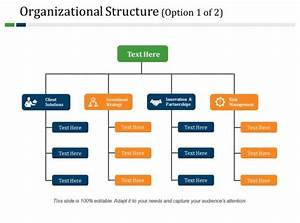 Corporate Organizational Chart Template Word Organizational Structure Powerpoint Slide Design Templates