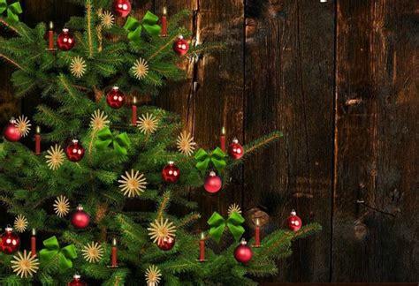 real christmas tree alive longer midlife