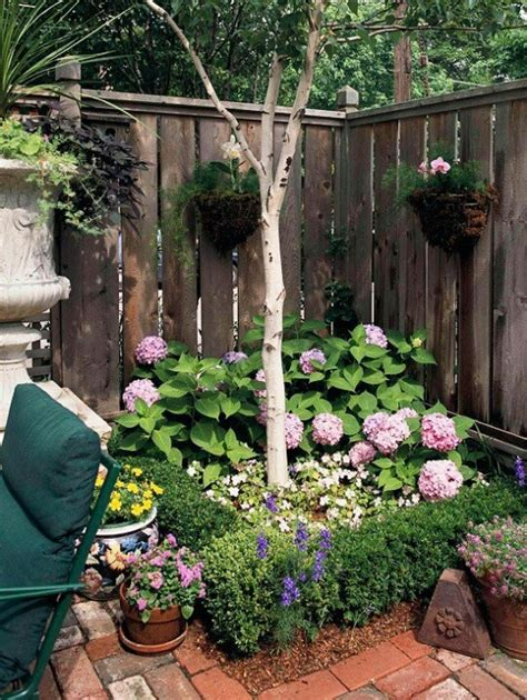 104 best images about garden ideas on asiatic