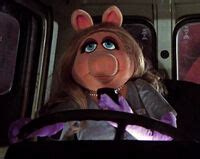 Put your ill gotten gains to use and clean your cab…. Driving Muppets | Muppet Wiki | Fandom powered by Wikia