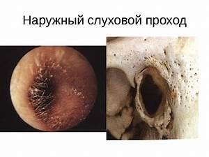 Dermalex от псориаза отзывы