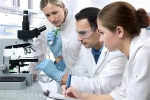 Por cada artículo científico firmado por una mujer como ...