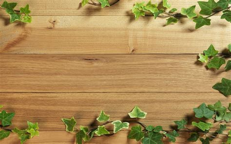 wooden plants 8822407 plant wood background story of cooks