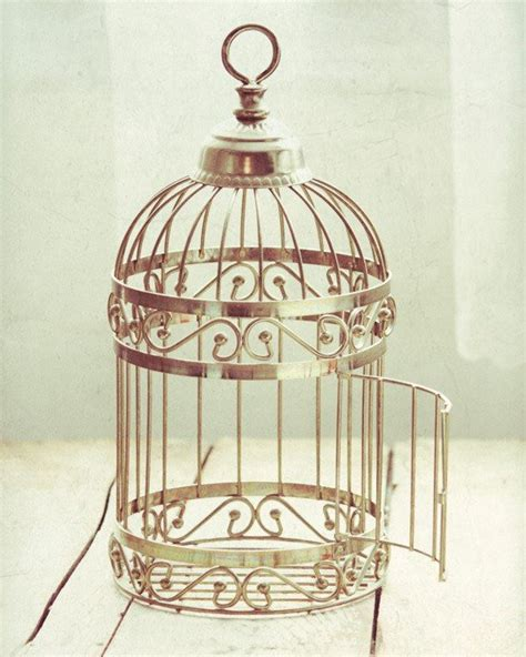 Items Similar To Flying Free Open Birdcage 8x10 Photograph. Victorian Makeup Vanity. Industrial Chandelier. Rolled Arm Sofa. Rattan Dining Chairs. Countertops Anchorage. Beach Dinnerware. Home Decorations. Microwave Cabinet Ikea