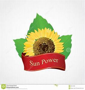 Design Labels Sunflower Oil Stock Vector - Image: 20512438