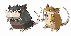 pokemon raticate images