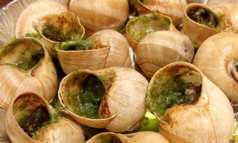 cuisine escargots image gallery nourriture