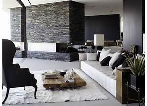 salon moderne design et cocon en couleurs foncees With tapis de sol avec cire cuir canapé