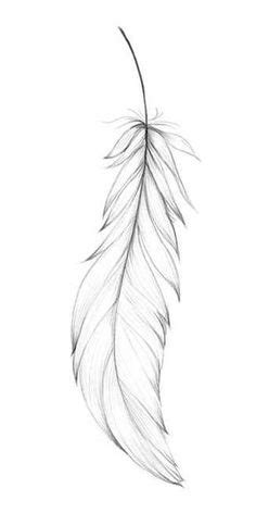 Feathers - Decorative Symbols Decorative | Feather drawing, Feather tattoo design, Feather template