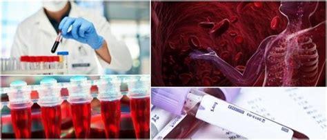 hematologia definicion anatomia de la sangre areas de