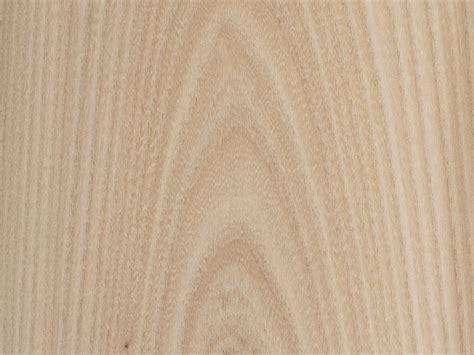 bureau d 騁ude bois feuille placage bois brut bilegno orme d 39 amérique ramageux n127 250x125 11 10mm