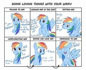 NOT Doing Harmful Things to Your Waifu: Rainbow Dash ...