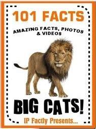 facts big cats big cat books  kids lions