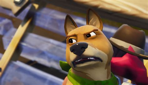 Fortnite Battle Pass Dog Re Skin Pulled From Official Shop