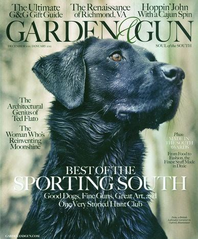 gun and garden garden gun magazine discountmags