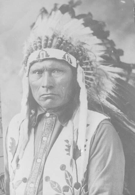 life  chief blue jacket  shawnee native american