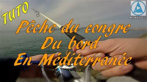 comment cuisiner le congre comment pêcher le congre du bord en mediterranée