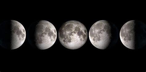 phases de la lune leur influence sur la nature viversum