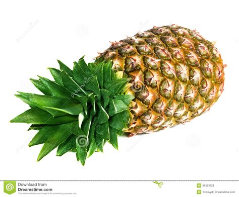 Pineapple Green Royalty Free Stock Photos Image 31353728