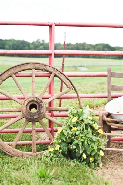 knoxville farm and garden 47 best wagon wheel garden images on wagon