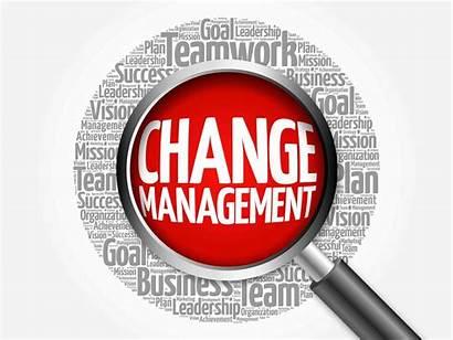 Management Change Process Illustration Cloud Word Dynamic