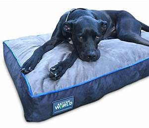 first quality 6quot thick orthopedic dog bed pure premium With best dog bed for hip dysplasia