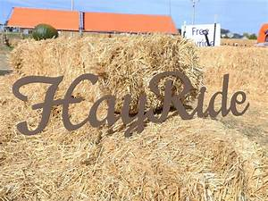 fall, farm, signs, , easy, decor, for, farm, festivals