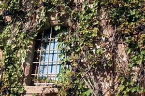befestigung franzosischer balkon so gelingt es am With französischer balkon mit fußballtor garten stabil