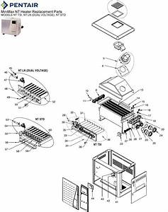Pentair Minimax Nt Heater Replacement Parts