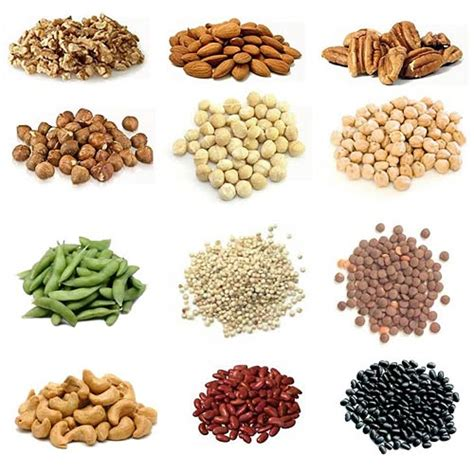 Best Vegan Muscle Building Protein Foods Nutrition Tips