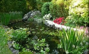 Plante Filtrante Pour Bassin : am nager un bassin avec fontaine d eau ~ Louise-bijoux.com Idées de Décoration