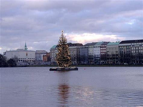 weihnachtsbaum alster tannenbaum bilder