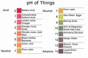 Ph Scale Of Common Items