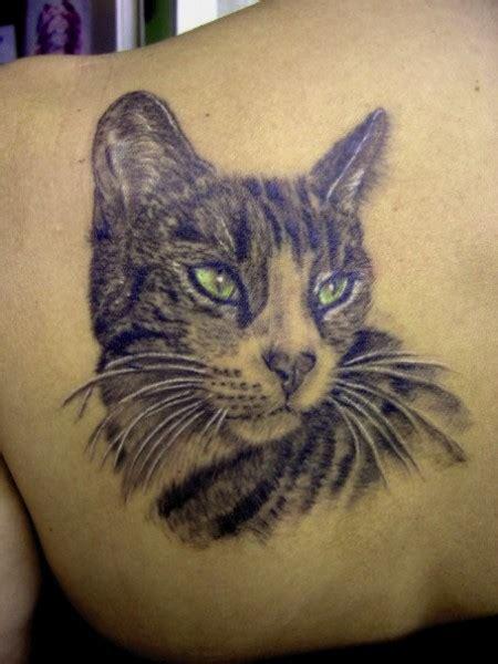 meinetattoobewertung katzen portrait tattoos von tattoo