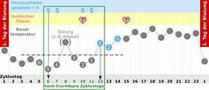 Fruchtbare Tage Berechnen Bei Unregelmäßigem Zyklus : eisprung traum experiment ~ Themetempest.com Abrechnung