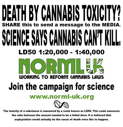 Marijuana Overdose Meme - pathologist dr kudair hussein incorrectly believes cannabis can kill