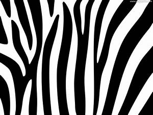 Zebra stripes design | PSDGraphics