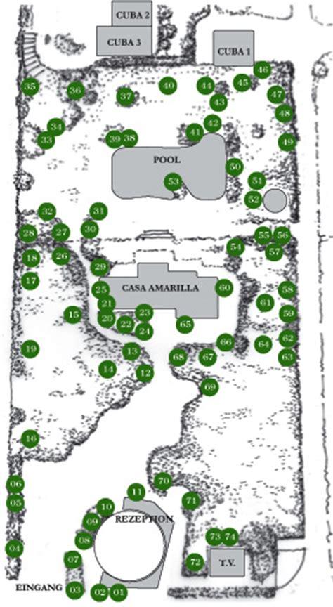 Botanischer Garten Plan by Botanischer Garten Auf La Palma Mit Tropischen Und