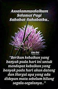 gambar bunga cantik selamat pagi  imej allah terbaik    allah muslim