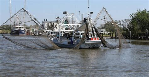 Ms Dept Wildlife Fisheries Boat Registration by 2015 December 18