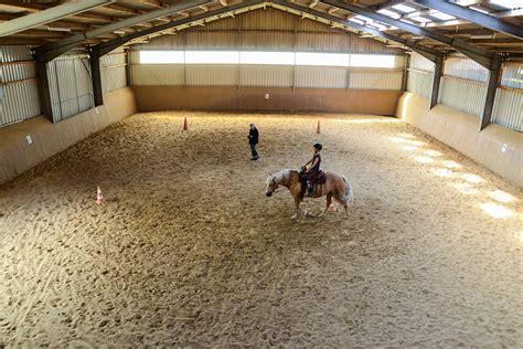 Urlaub Mit Pferd Cuxhaven