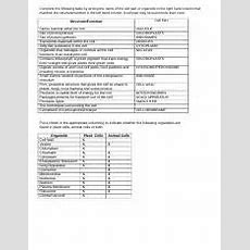 Cell Organelles Worksheet Key  Name Date Pd Cell Organelles Worksheet Complete The Following