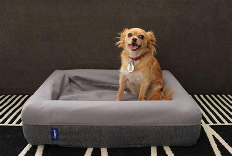casper dog bed review popsugar pets