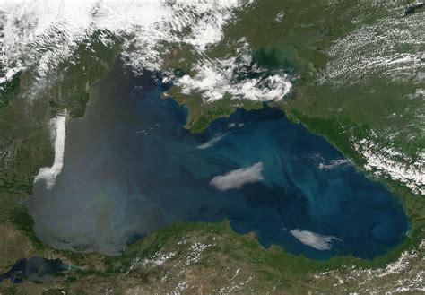 phytoplankton blooms   black sea