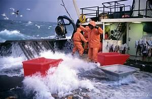 Bering Sea crab fishing in stormy seas | Karen Ducey ...