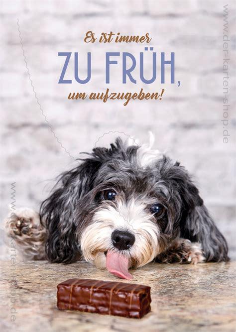 postkarte grusskarte spruchkarte kleiner hund es ist immer