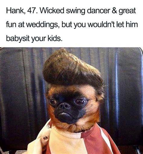 dog bios    remind