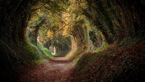 Nature Photo Contest Win A Canon 5d Mk Iii Or Nikon D800